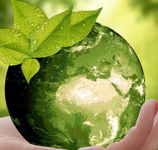 Сочинение экология